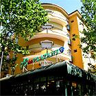 Hotel Dei Platani - Hotel tre stelle - Miramare