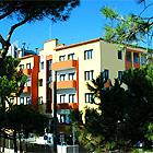 Hotel Corallo Rimini - Hotel tre stelle sup. - Rimini - Marina Centro