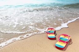Offerta d'agosto in hotel 3 stelle a Rimini vicino al mare + gratis al parco acquatico