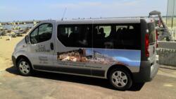 Shuttle-Service zum Mirabilandia