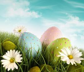 Special Offers for Easter holidays all-inclusive hotel with free park in Rimini
