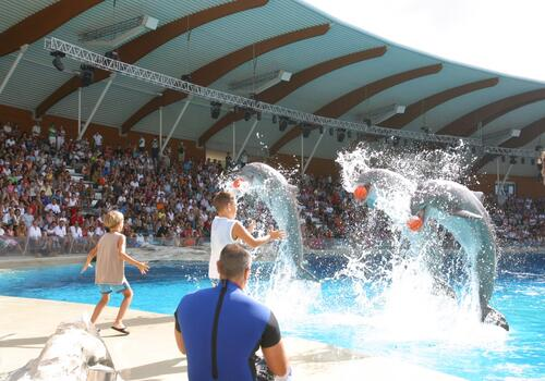 Offerta hotel a Settembre a Rimini: mezza pensione e parco in omaggio