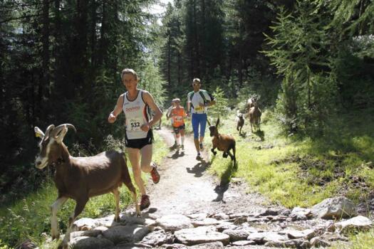 Stralivigno: la mezza maratona di Livigno!