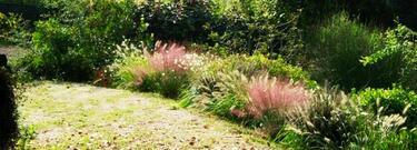 Indizi per un giardino