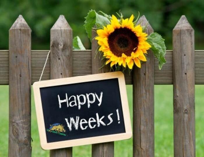 OFFERTA IN BASSA STAGIONE : Happy Weeks