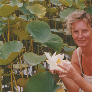 Lago Lotus. Ubud - Bali, 1980