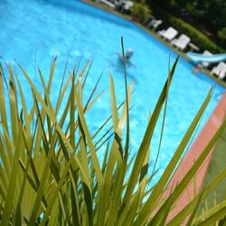 Last minute July, Hotel with swimming pool and parking from € .390,00 to Rimini in all Inclusive