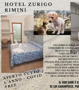 hzurigo it 1-it-306481-soggiorni-business-a-rimini 001