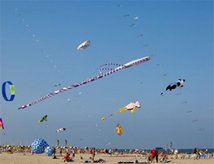 International Sprintkite News 2013 a Cervia