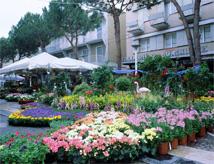42esima edizione della mostra mercato Cattolica in Fiore