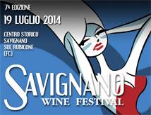 Savignano Wine Festival 2014