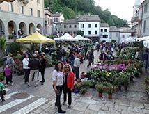 Florea 2017 a San Marino: mostra mercato giardinaggio