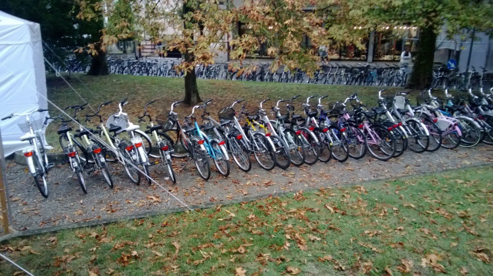 Noleggio risci viserba noleggio biciclette rimini rent for Noleggio di grandi masser