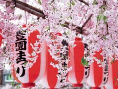 Festival Giapponese Nippon Matsuri