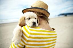 Vacances en Septembre à Rimini en Italie avec nos animaux à l'hotel près de la mer