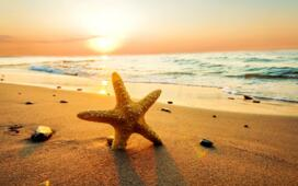 All Inclusive package with family deal for the first week of September in Hotel in Rimini-Italy