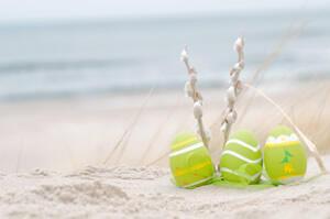 Easter Offer in Rimini