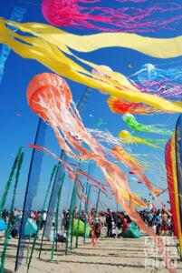 Pinarella di Cervia International Kite Festival Offer -
