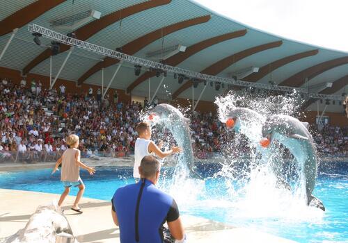 Специальные предложение в Cентябре в Римини:Полупансион и Tематические парки