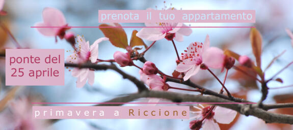 Ponte del 25 aprile a Riccione | offerte last minute affitti appartamenti, case vacanza per famiglie