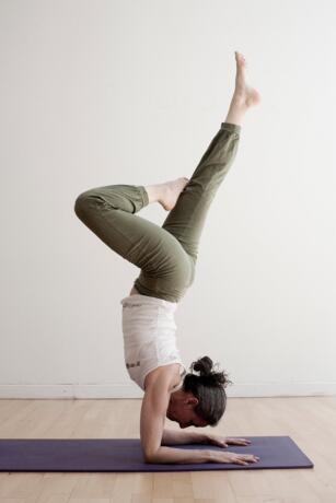 Ritiro Ashtanga Yoga dall 8 al 15 Settembre con Susanna Finocchi