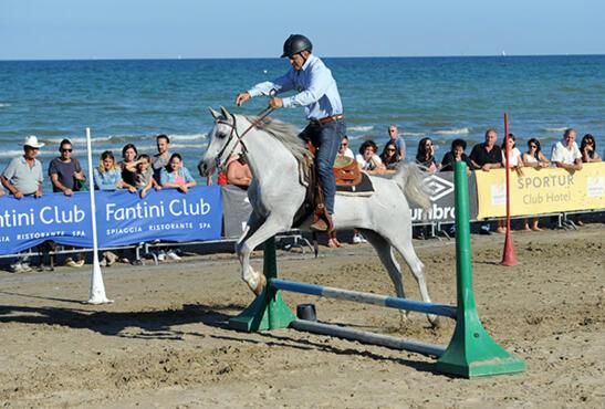 5-6 Ottobre 2019 - 15ª A Cavallo del Mare - Rassegna Equestre