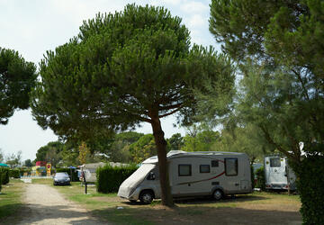 Pitch holidays in Pineta sul Mare, Bibione