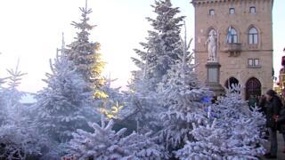 The Christmas of Wonders