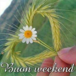 Bon week-end !!