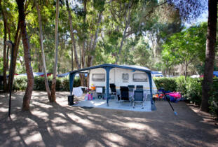 Holidays in Tuscany with camping card and many advantages WOW!