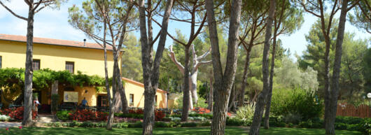 Flexy Time! Special offer long stays in Camping Village in Tuscany