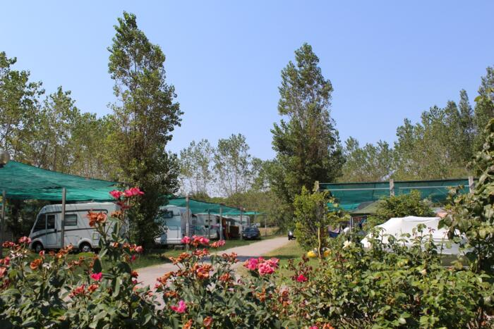 Special offer CAMPING: