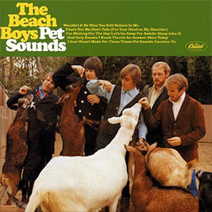 The Beach Boys -10 titoli Analogue Productions su LP 33 giri con vinile 200 gr.  IN OFFERTA!