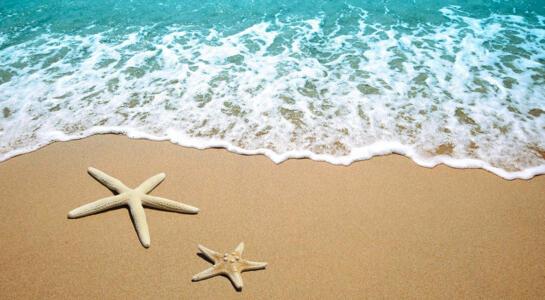 OFFERTA di Giugno a Rimini in Hotel 4 stelle vicino alla spiaggia
