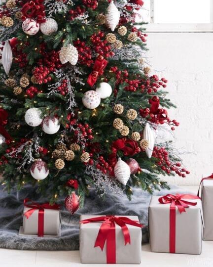 A Natale c'è Carioni