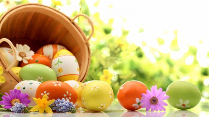 Ben tornata Pasqua a Pinarella !