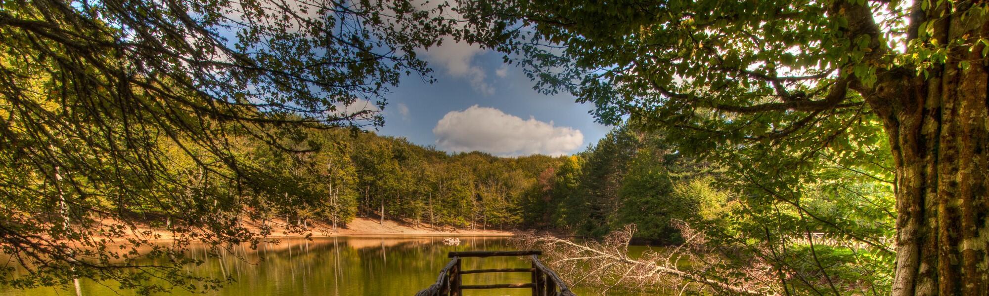 Vacanza alla scoperta della Foresta Umbra in Residence a Peschici