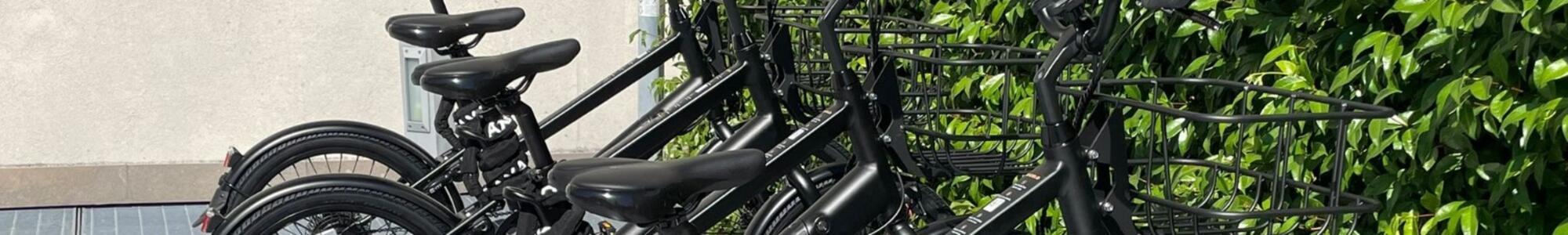 Noleggia una e-bike Bicelo