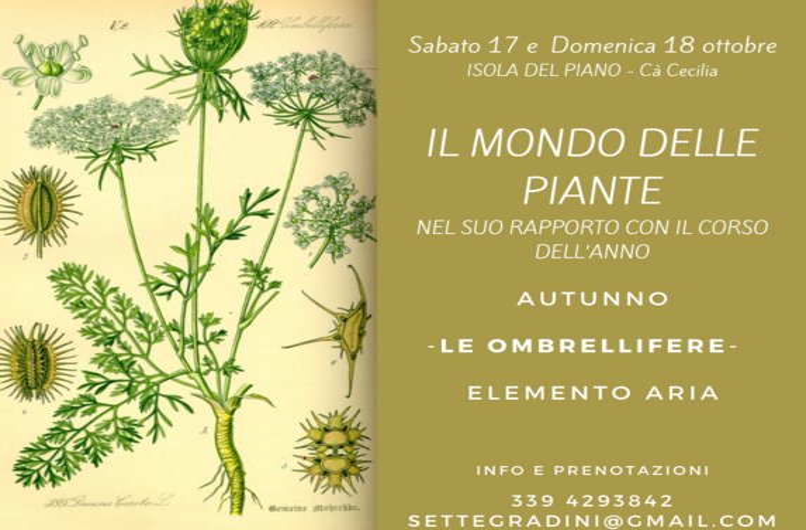 IL MONDO DELLE PIANTE - Isola del Piano, Ca' Cecilia