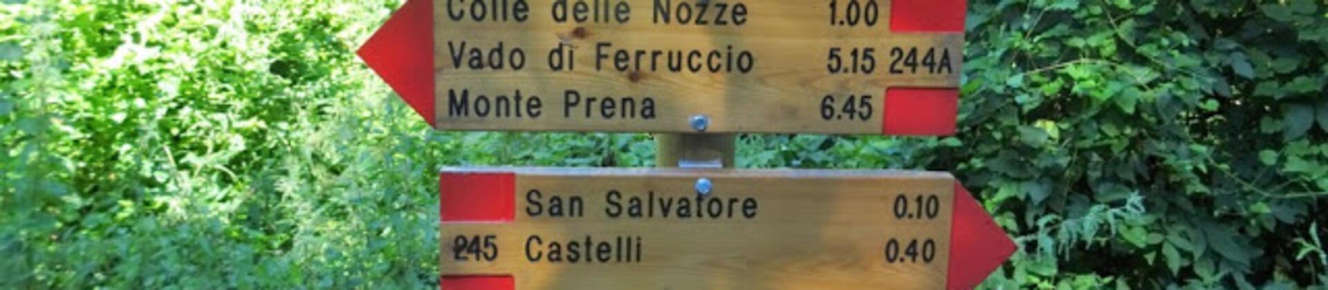 Escursioni in Abruzzo partendo da Roseto degli Abruzzi