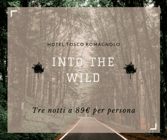 Escursioni - Into The Wild