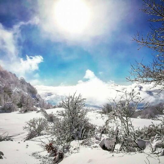 Trekking: Scopri le escursioni guidate sulle nostre montagne