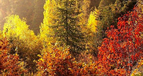 Eventi novembre Valle d'Aosta
