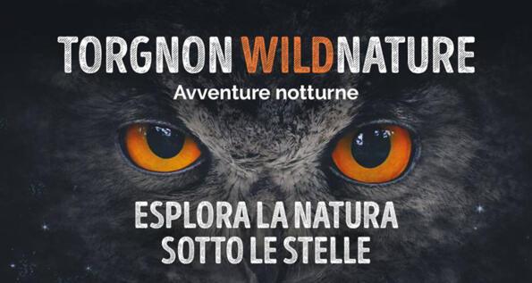 TORGNON: ESPLORA LA NATURA SOTTO LE STELLE