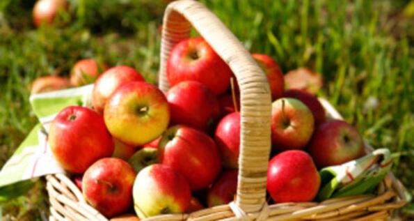 Mele Vallée – Mostra mercato sulle mele