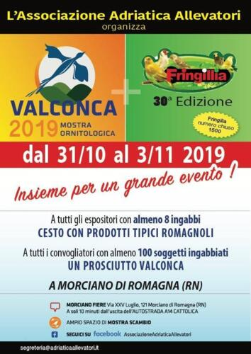 Mostra Ornitologica Valconca e Fringillia 2019 - Morciano di Romagna (RN)