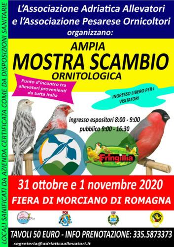 Mostra Ornitologica Valconca e Fringillia 2020 - Morciano di Romagna (RN)