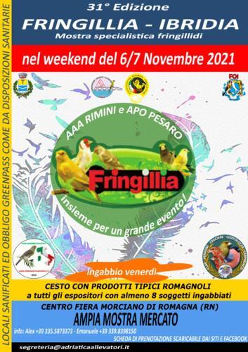 Mostra Ornitologica Fringillia Ibridia 2021 - Morciano di Romagna (RN)