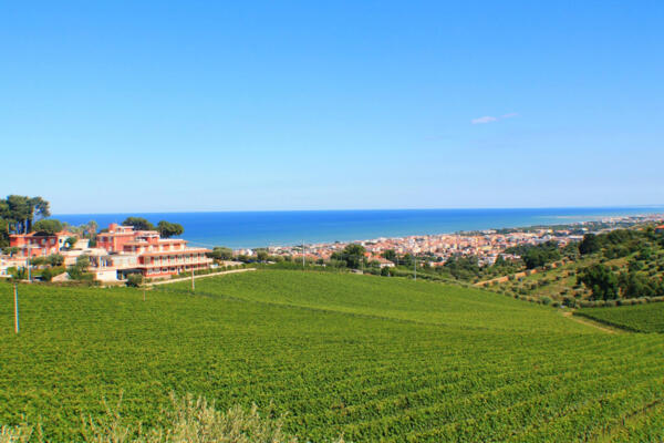 Special Offer for Holidays in June at Il Parco sul Mare