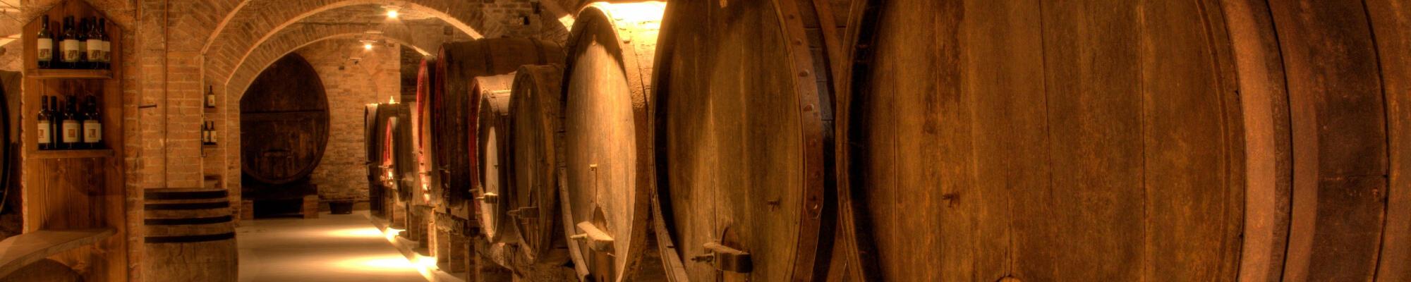 Speciale WINE EXPERIENCE in Residence a Castiglion Fiorentino AR